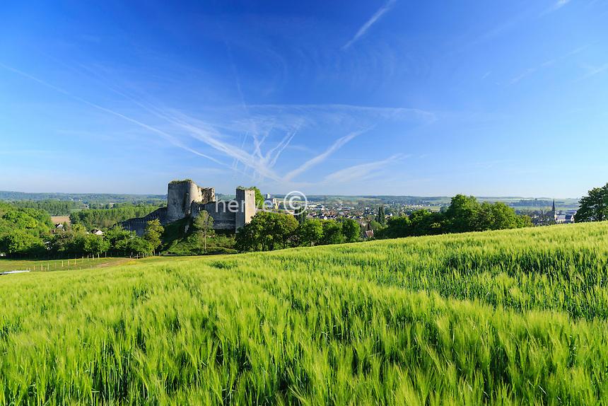 France, Loir-et-Cher (41), Montoire-sur-le-Loir, le château // France, Loir et Cher, Montoire sur le Loir, the castle