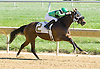 Donnatale winning at Delaware Park on 10/11/12