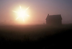 farm buidlings Early morning mist