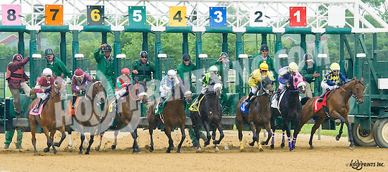 Start on the 5th race at Delaware Park on 5/21/16