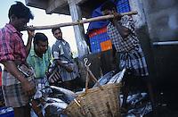 INDIA Tamil Nadu Nagapattinam, coast fishermen / INDIEN Nagapattinam, Kuestenfischer