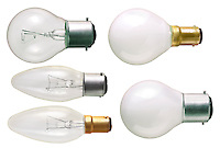 Standard electric light bulbs for cut out