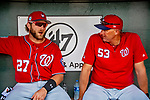 1 March 2019: Washington Nationals catcher Spencer Kieboom (left) chats with AAA Manager Randy Knorr in the dugout prior to a Spring Training game against the Miami Marlins at Roger Dean Stadium in Jupiter, Florida. The Nationals defeated the Marlins 5-4 in Grapefruit League play. Mandatory Credit: Ed Wolfstein Photo *** RAW (NEF) Image File Available ***