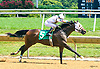 Kowboy Karma winning at Delaware Park on 7/19/17
