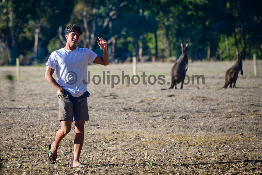 Margaret River, Western Australia. (Tuesday April 1, 2014) Gabriel Medina (BRA)  with the local wildlife- kangaroos.–  The 2014 Drug Aware Margaret River Pro World Championship Tour event is about to kick off tomorrow.  Photo: joliphotos.com