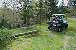 Polaris Ranger side-by-side UTV skidding logs in a tree tree removal woodland operation.
