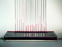 CAPILLARY ACTION - MOVEMENT OF WATER<br /> Its Interaction With the Walls of A Thin Tube.<br /> Water climbs up a thin glass tube because of the strong hydrogen-bonding interactions between the water and the oxygens at the surface of the glass (SiO2), climbing higher in the smaller diameter tube.