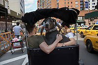 Doggie Parade, NYC
