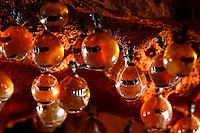 In the honeypot ants' chambers. The repletes cling to the vertical walls as well as the ceiling of the storage chamber with their front legs. They are visited by the worker ants who caress their antennas and head to receive a drop of the precious honeydew.///Dans les chambres des fourmis pot de miel. Les fourmis réservoirs s'accrochent aux parois verticales mais aussi au plafond de la chambre de stockage avec leurs pattes avant. Elles sont visitées par les ouvrières qui leur caressent les antennes et la tête pour recevoir une goutte du précieux miellat.