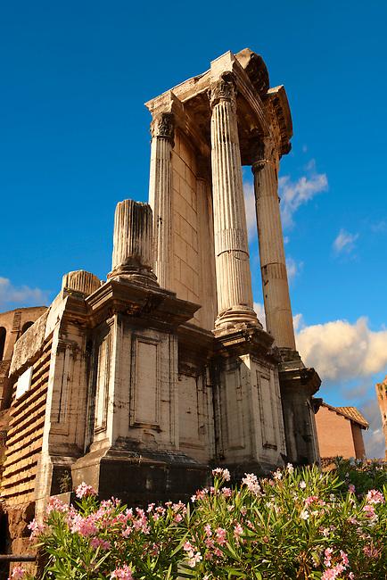 Temple of Vesta, The Forum Rome
