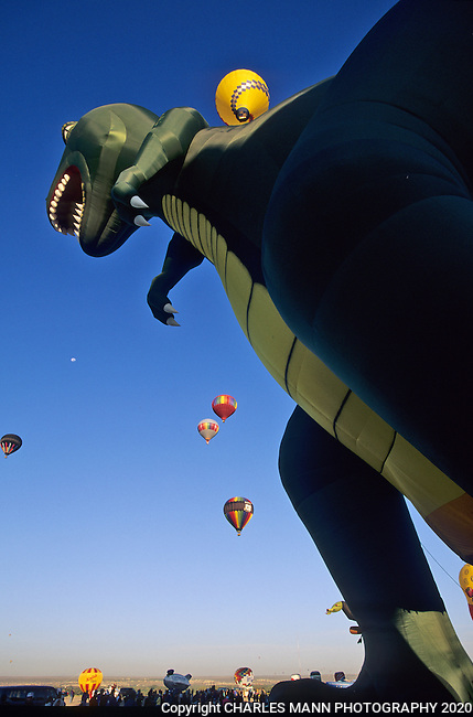 A giant green dinosaur adds to the drama and color at the Albuquerque International Hot Air Balloon Fiesta