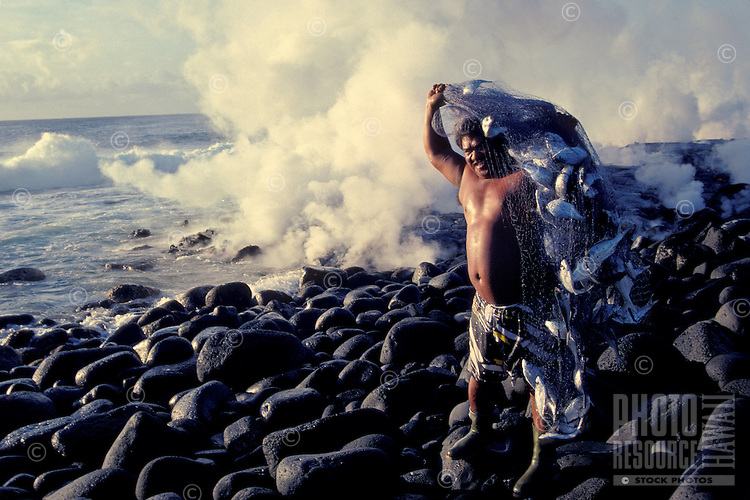 Man with net full of fish, caught when lava entered ocean. Kalapana, Big Island.