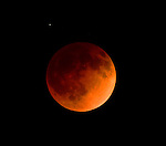 "SAN DIEGO, CA - APRIL 15:   A ""blood moon"" is observed during a total lunar eclipse on April 15, 2014 in San Diego, California.  (Photo by Donald Miralle)"