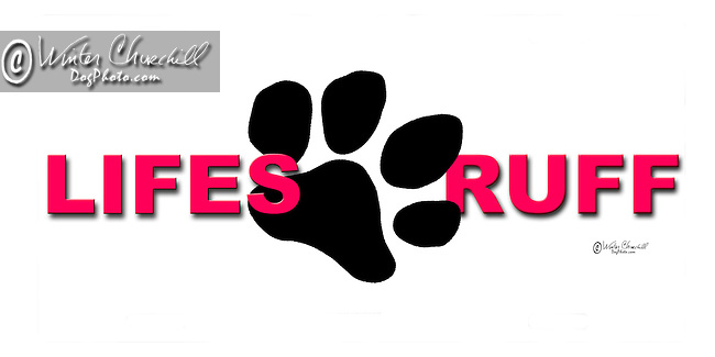 Lifes Ruff over a big Paw print This design is offered on gift merchandise ONLY.<br />