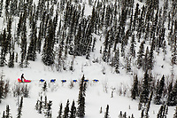 Thursday March, 2012   Wade Marrs travels on the mining road trail on his way to Ophir.   Iditarod 2012.