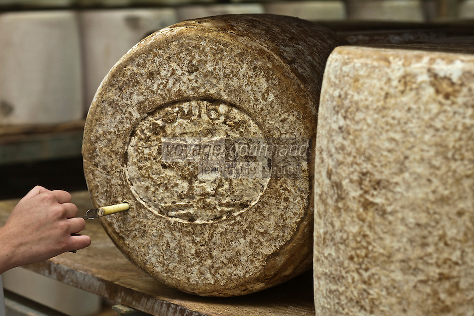 Europe/France/Midi-Pyrénées/12/Aveyron/Aubrac/Laguiole: Affinage du Fromage de Laguiole AOP à la Coopérative Jeune Montagne _ La cave d'Affinage
