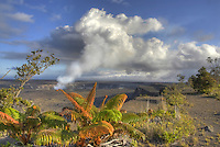Halema'uma'u crater with rising volcanic ash cloud at Hawai'i Volcanoes National Park, Big Island of Hawai'i; native 'ama'u ferns grow in the foreground.