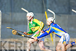 Kerry v Wicklow in the National Hurling League in Tralee on Sunday   Copyright Kerry's Eye 2008