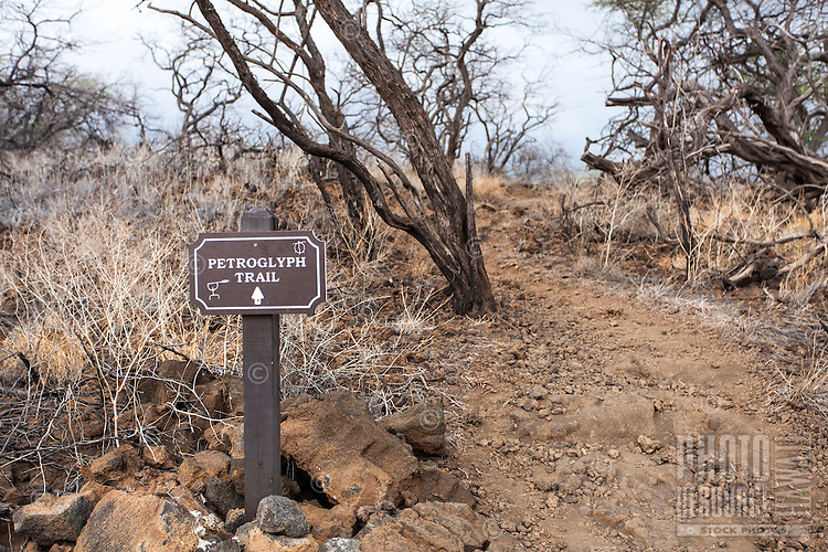 """Petroglyph Trail"" sign at Puako Petroglyph Park, Big Island."