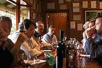 Wine tasters in the tasting room. Bodega Vinos Finos H Stagnari Winery, La Puebla, La Paz, Canelones, Montevideo, Uruguay, South America