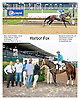 Harbor Fox winning at Delaware Park on 5/16/12