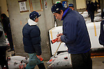 Tokyo, 1st of March 2010 - Tuna at Tsukiji wholesale fish market, biggest fish market in the world. 5:20 a.m, a middleman estimating the prices of frozen tunas before the auction.