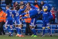 Cardiff City v Rotherham United - 18.02.2017