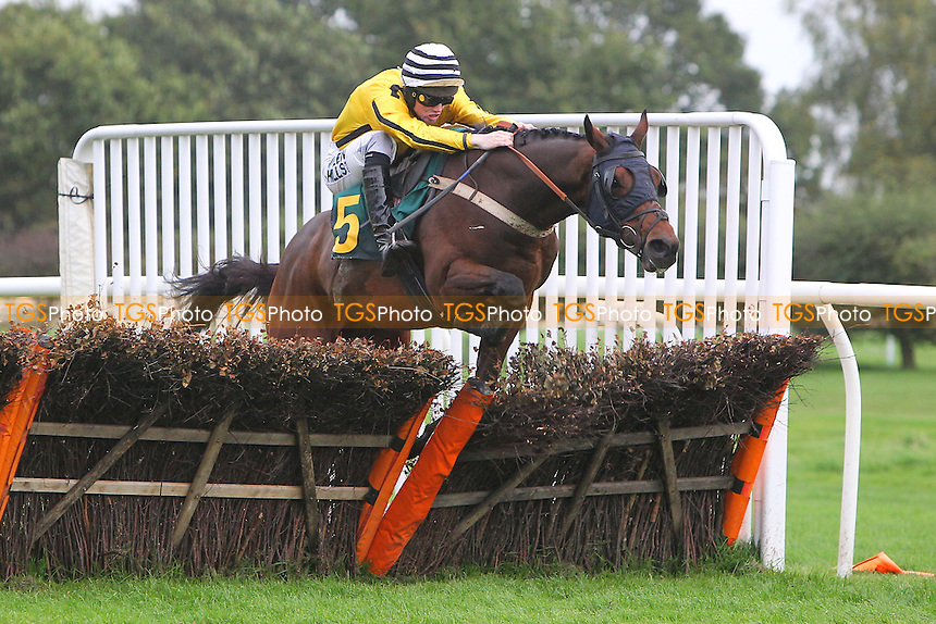 Nebula Storm ridden by Joshua Moore in jumping action during the Pudding Norton Conditional Jockeys Selling Handicap Hurdle - National Hunt Horse Racing at Fakenham Racecourse, Norfolk - 25/10/13 - MANDATORY CREDIT: Gavin Ellis/TGSPHOTO - Self billing applies where appropriate - 0845 094 6026 - contact@tgsphoto.co.uk - NO UNPAID USE