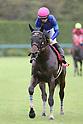 Horse Racing: Sankei Sho Centaur Stakes at Hanshin Racecourse