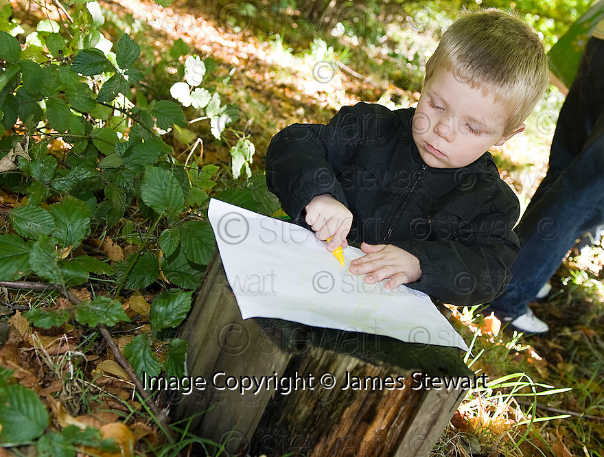 04/10/2010   Copyright  Pic : James Stewart.011_helix_monday  .::  HELIX PROJECT ::  KIDS DO SOME TREE RUBBING PICS DURING THEIR TEDDY BEAR PICNIC ::.