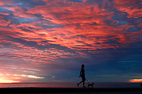 Jan. 25, 2014_San Diego_ California_USA_| A person walks a dog as the sun sets in La Jolla.    | _Mandatory Photo Credit: Photo by K.C. Alfred/UT San Diego/Copyright 2014
