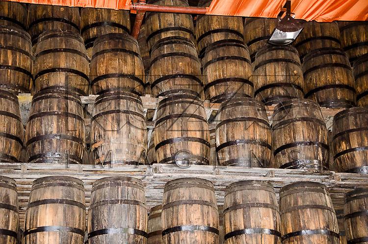 Barris de carvalho utilizados para envelhecimento de cachaça, Recife - PE, 12/2012.