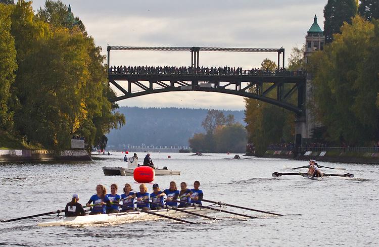 Rowing, Head of the Lake Regatta, November 2 2014, Seattle, University of British Columbia crew, Women's 3JV 8+, Washington State, Lake Washington Rowing Club, Lake Washington Ship Canal, Montlake Cut,