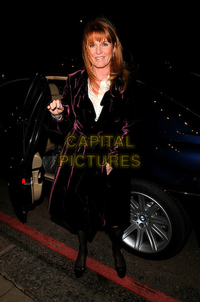 SARAH FERGUSON, THE DUCHESS OF YORK.The Chain of Hope Annual Ball, Dorchester Hotel, London, England..January 4th, 2008.full length black car lace stockings tights pattern print burgundy maroon velvet jacket purple .CAP/CAN.©Can Nguyen/Capital Pictures