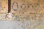 The Remains Of Kitchen Wallpaper In A Kolmanskop Home.