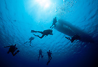 Scuba divers begin a dive from a boat off Roatan, Honduras.
