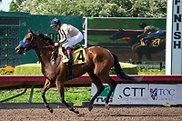 CERRITOS, CA  JULY 24: #4 Marley's Freedom, ridden by Drayden Van Dyke, canter back to the connections after winning the Great Lady M Stakes (Grade ll), on July 7, 2018, at Los Alamitos Race Course in Cerritos, CA. (Photo by Casey Phillips/Eclipse Sportswire/Getty Images)