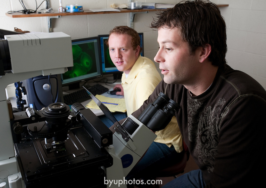 0711-34 366.CR2.College of Life Sciences.Physiology & Developmental Biology.Dr. Mark Hansen's Lab..November 12, 2007..Photography by Jaren Wilkey..Copyright BYU Photo 2007.All Rights Reserved .photo@byu.edu  (801)422-7322