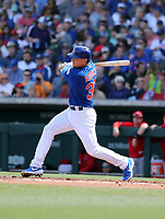 James Aducci - Chicago Cubs 2019 spring training (Bill Mitchell)