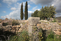 Stone capital carved with stylised vegetal motifs on a plinth in the South East quarter of Volubilis, Northern Morocco. Volubilis was founded in the 3rd century BC by the Phoenicians and was a Roman settlement from the 1st century AD. Volubilis was a thriving Roman olive growing town until 280 AD and was settled until the 11th century. The buildings were largely destroyed by an earthquake in the 18th century and have since been excavated and partly restored. Volubilis was listed as a UNESCO World Heritage Site in 1997. Picture by Manuel Cohen