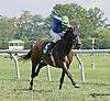 Derby Milliner winning at Delaware Park on 9/6/14