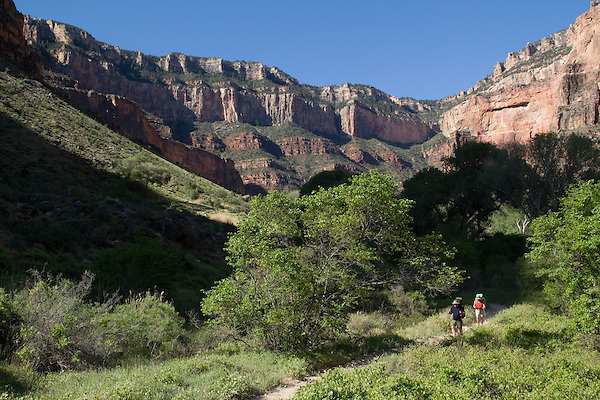 Hikers on the <br />