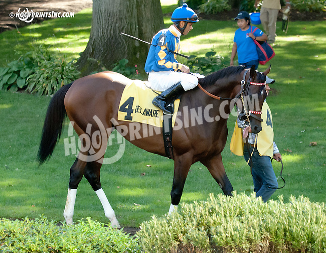 Back Forty before The Damitrius Stakes at Delaware Park on 9/4/13