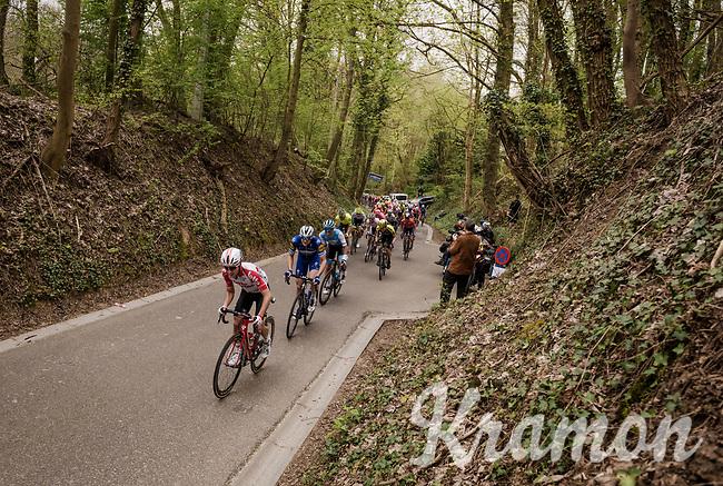 Bjorg Lambrecht (BEL/Lotto-Soudal) leading the peloton up the Hagaard climb<br /> <br /> 59th De Brabantse Pijl - La Flèche Brabançonne 2019 (1.HC)<br /> One day race from Leuven to Overijse (BEL/196km)<br /> <br /> ©kramon