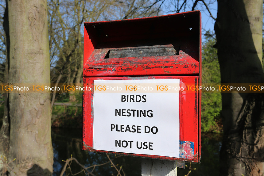 Birds Nesting, Please Do Not Use signage during Essex CCC vs Durham MCCU, English MCC University Match Cricket at The Cloudfm County Ground on 3rd April 2017