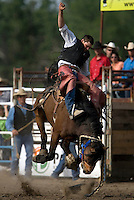 A cowboy bucks a saddle bronc during the Miles City Bucking Horse Sale at the Eastern Montana Fairgrounds in Miles City Montana Sat., May 19, 2007. Saddle broncs and bareback broncs are auctioned off after they are bucked.
