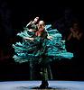 Flamenco Festival 16th February 2016