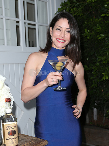 LOS ANGELES, CA - NOVEMBER 4: Emmanuelle Vaugier, at The 2017 Fluffball Benefiting Forgotten Horses Rescue! at The Lombardi House In Los Angeles, California on November 4, 2017. Credit: Faye Sadou/MediaPunch
