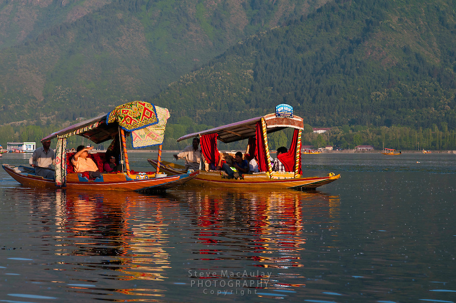 Brilliantly colored shikara gondolas and reflections in Dal Lake, Srinagar, Kashmir, India.