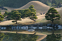 A miniature Mount Fuji and a series of pinus trees dominate the Suizen-ji garden